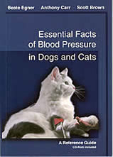 Essential Facts of Blood Pressure in Dogs and Cats