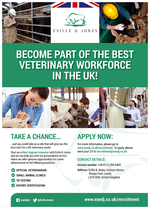 Foto: BECOME PART OF THE BEST VETERINARY WORKFORCE IN THE UK!