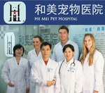 Foto: Practice Experience at the He Mei Pet Hospital in Chongqing, China